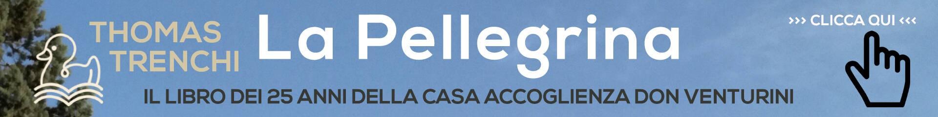 Banner Pellegrina